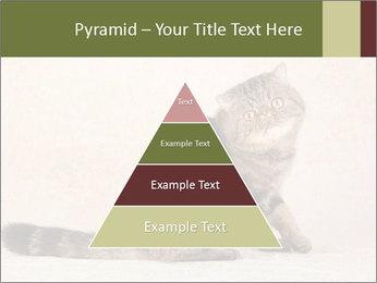 0000071593 PowerPoint Templates - Slide 30