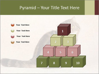 0000071593 PowerPoint Templates - Slide 31