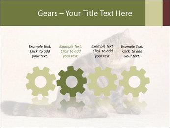 0000071593 PowerPoint Templates - Slide 48