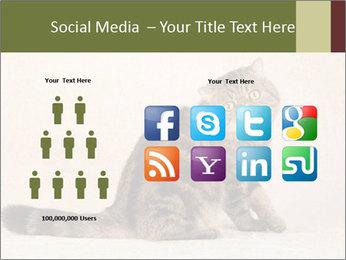 0000071593 PowerPoint Templates - Slide 5