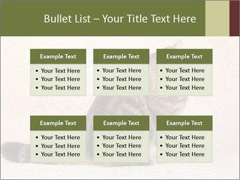 0000071593 PowerPoint Templates - Slide 56