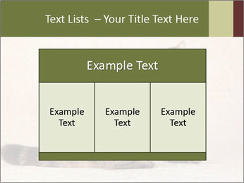 0000071593 PowerPoint Templates - Slide 59