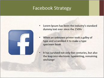 0000071593 PowerPoint Templates - Slide 6