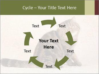 0000071593 PowerPoint Templates - Slide 62