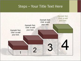 0000071593 PowerPoint Templates - Slide 64