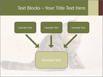 0000071593 PowerPoint Templates - Slide 70
