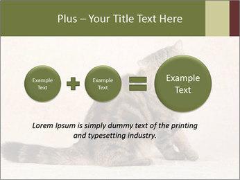 0000071593 PowerPoint Templates - Slide 75