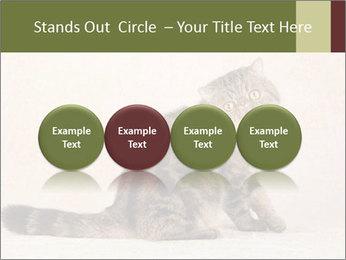 0000071593 PowerPoint Templates - Slide 76
