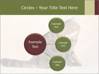 0000071593 PowerPoint Templates - Slide 79