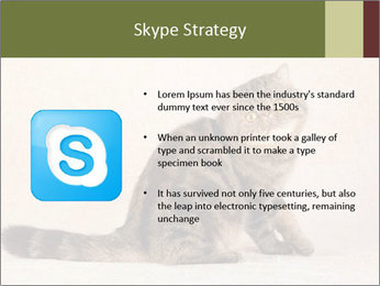 0000071593 PowerPoint Template - Slide 8