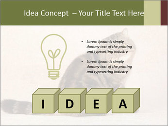 0000071593 PowerPoint Template - Slide 80