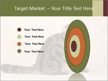 0000071593 PowerPoint Templates - Slide 84