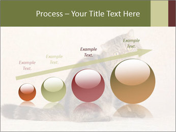 0000071593 PowerPoint Template - Slide 87