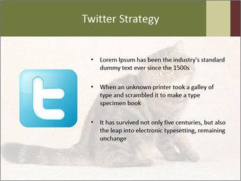 0000071593 PowerPoint Templates - Slide 9