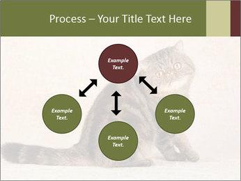0000071593 PowerPoint Templates - Slide 91