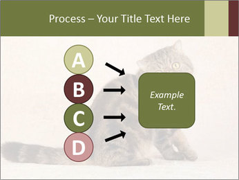 0000071593 PowerPoint Templates - Slide 94