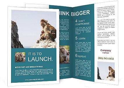 0000071596 Brochure Template