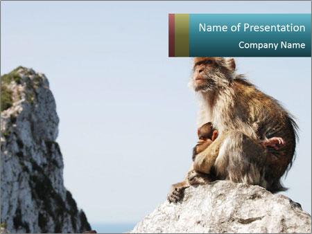 0000071596 PowerPoint Templates