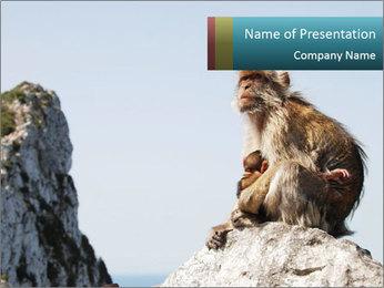 0000071596 PowerPoint Template - Slide 1