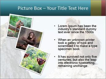 0000071596 PowerPoint Template - Slide 17
