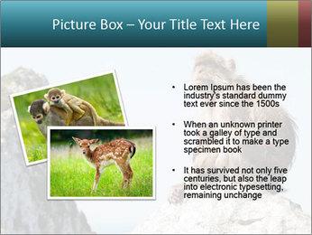 0000071596 PowerPoint Template - Slide 20