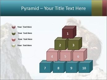 0000071596 PowerPoint Template - Slide 31