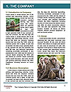 0000071596 Word Template - Page 3