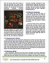 0000071602 Word Template - Page 4