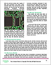 0000071612 Word Template - Page 4
