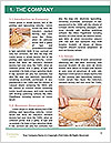 0000071618 Word Template - Page 3