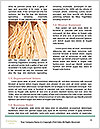 0000071618 Word Template - Page 4