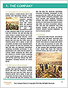 0000071620 Word Template - Page 3