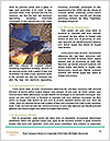 0000071620 Word Template - Page 4