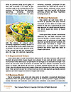 0000071629 Word Template - Page 4