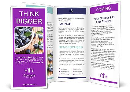 0000071630 Brochure Template