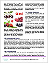 0000071630 Word Template - Page 4