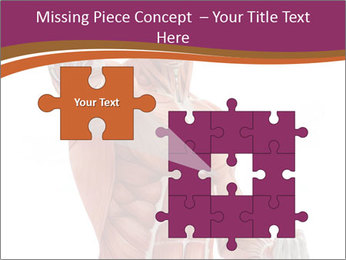 0000071633 PowerPoint Template - Slide 45