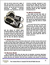 0000071635 Word Templates - Page 4