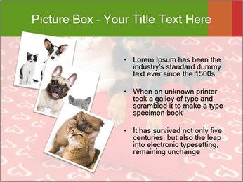 0000071640 PowerPoint Templates - Slide 17