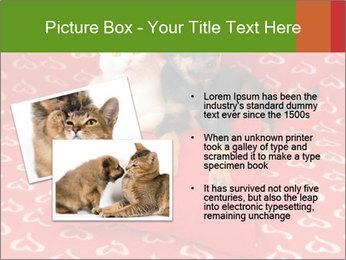 0000071640 PowerPoint Templates - Slide 20