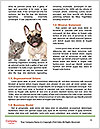 0000071640 Word Templates - Page 4