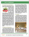 0000071641 Word Template - Page 3