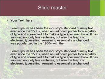 0000071651 PowerPoint Template - Slide 2