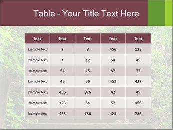 0000071651 PowerPoint Template - Slide 55