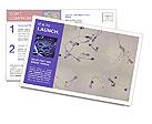 0000071663 Postcard Templates