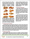 0000071665 Word Templates - Page 4