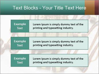 0000071667 PowerPoint Template - Slide 58