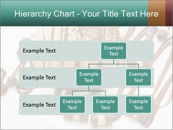 0000071667 PowerPoint Template - Slide 67