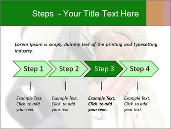 0000071679 PowerPoint Template - Slide 4