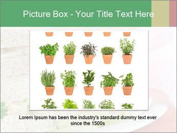 0000071681 PowerPoint Templates - Slide 15